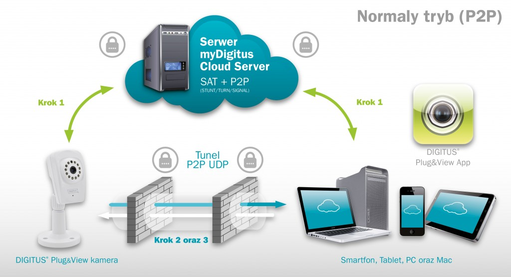 DIGITUS-Plug&View_Installation_PL-servermode